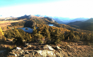 Alpine larch surrounding Rock Isle and Larix Lakes above Sunshine Village turn the Great Divide to golden on Tuesday afternoon, Sept 22. View from the Rock Isle Lake webcam, courtesy  Sunshine Village skibanff.com.
