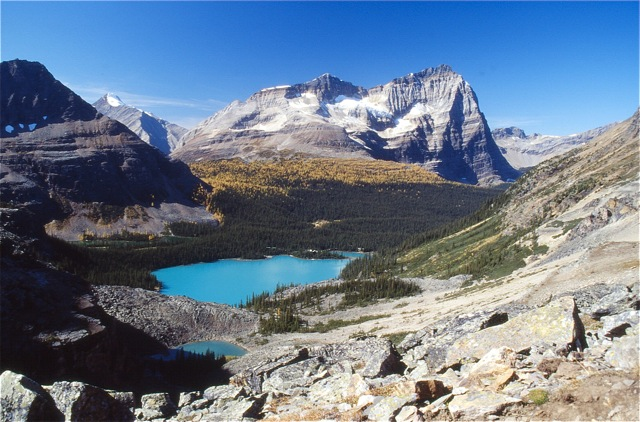 Lake O'Hara: A quota for paradise