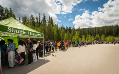 Desperately seeking shuttles at Lake Louise